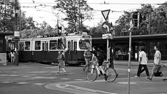 Tram, Innere Stadt, Vienna (dckellyphoto) Tags: noiretblanc vienna streetcar wien austria österreich europe europa vacation 2019 trip city tram train monochrome canoneos6dmarkii people bike bicycle outside urban