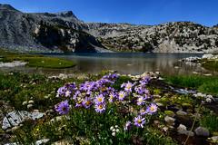 w23 (@GilAegerter / klahini.com) Tags: wallowas hiking mountains backpacking trails wilderness camping peaks