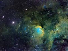 Tulip Nebula (SH2-101) and Cygnus X-1 (Phil Wollenberg) Tags: tulip nebula cygnus x1 sh2101 deepskywest deepsky cosmos light blackhole long exposure space takahashi myt qsi