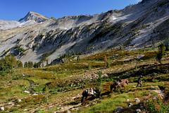 w34 (@GilAegerter / klahini.com) Tags: wallowas hiking mountains backpacking trails wilderness camping peaks