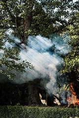 Bonfire in Flaxton churchyard (jhotopf) Tags: smoke bonfire d810 flaxton 24120f4nikkor nikon