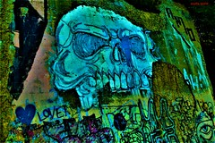 Skull (SCOTTS WORLD) Tags: adventure america architecture art artwork detroit digital decay downtown detail detroitderek 313 exploring exploration exhibit dequindrecut city color fun graffiti michigan midwest motown motorcity morning mural panasonic pov perspective park urban usa unitedstates urbex urbanexploring urbandecay urbanart