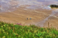 Castlerock NIR - Downhill seashore - TiltShift (Daniel Mennerich) Tags: castlerock downhillseashore tiltshift canon dslr eos hdr hdri spiegelreflexkamera slr tilt shift vereinigteskönigreich unitedkingdom uk royaumeuni reinounido