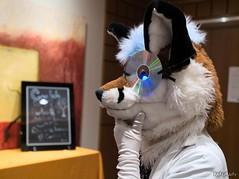 Canfurence 2019 - Dr. Softpaws (Kakurady) Tags: fox labcoat fursuit canfurence canfur ottawa ontario canada