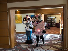 Canfurence 2019 - Kokichi, Rio Startiger (Kakurady) Tags: fennec fox purple white fursuit tiger cat black pink canfurence canfur ottawa ontario canada