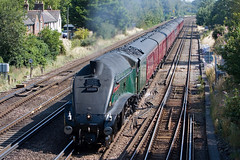 60009 - Union of South Africa (Signal Box - Railway photography) Tags: outdoor railway railroad uk steam train engine locomotive mainline unionofsouthafrica 60009 a4 pacificclass lner wortingjunction hampshire railwaytouringcompany steamtrain