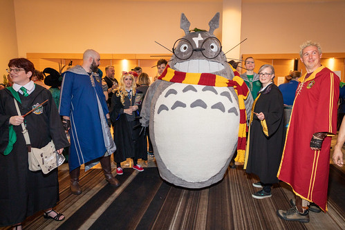 Harry Potter Totoro