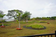 Dole pineapple plantation (Like_the_Grand_Canyon) Tags: hawaii dole pineapple plantation