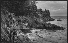 bluffs, rocky outcroppings, Atlantic Ocean, Owl's Head, Maine, Ercona II, Kodak TMAX 400, HC-110 developer, 9.7.19 (steve aimone) Tags: bluffs rocky seacoast ocean atlanticocean owlshead maine erconaii kodaktmax400 hc110developer 120 120film film 6x9 mediumformat monochrome monochromatic blackandwhite seascape folder
