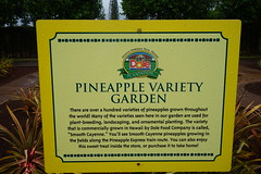 Pineapple Variety Garden (Like_the_Grand_Canyon) Tags: hawaii pineapple plantation dole