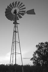 Windmill at Wellington (simoneandginko) Tags: victoria roadtrip volcano mountain trees fog sunset south australia