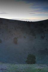 An extinct volcano (simoneandginko) Tags: victoria roadtrip volcano mountain trees fog sunset