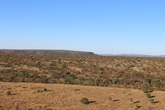 Waterberg Hills (Rckr88) Tags: waterberggamepark limpopo southafrica waterberg game park south africa hills waterberghills waterberghill hill greenery green grass mountains mountain view views nature naturalworld outdoors travel travelling viewpoint
