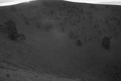 Descending, Mt Noorat (simoneandginko) Tags: victoria roadtrip volcano mountain trees fog sunset monochrome