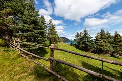 Gallows Cove, East Coast Trail (Karen_Chappell) Tags: newfoundland nfld trail path fence green blue sky field grass gallowscove torbay avalonpeninsula atlanticcanada canada wideangle fisheye canonef815mmf4lfisheyeusm landscape scenery scenic clouds eastcoasttrail eastcoast