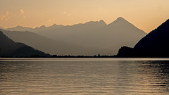 Iseltwald, Switzerland (Capchure.ch) Tags: iseltwald lake switzerland alps alpine water blue forest drone sunset nature photography castle hotel waterfall outdoors freedom lumix gh5 dji