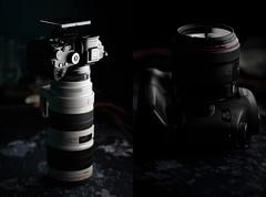 Hybrid & Homogeneous (Arnez_) Tags: gear sony canon 70200 85 tech dark portrait metabones