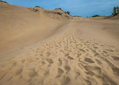 Expanse of Sand (mswan777) Tags: sand footprints expanse landscape outdoor scenic dune nature apple iphone iphoneography mobile bridgman michigan hike sky up blue tan barren