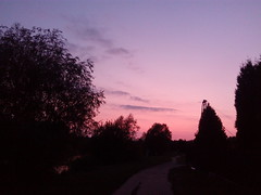 Roads 00 (gemiiniitwiin) Tags: road roads landscape sunset lake water transmissiontowers evening nature summer