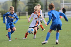 """HBC Voetbal • <a style=""""font-size:0.8em;"""" href=""""http://www.flickr.com/photos/151401055@N04/48705320948/"""" target=""""_blank"""">View on Flickr</a>"""