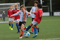 """HBC Voetbal • <a style=""""font-size:0.8em;"""" href=""""http://www.flickr.com/photos/151401055@N04/48705333918/"""" target=""""_blank"""">View on Flickr</a>"""