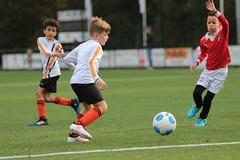 """HBC Voetbal • <a style=""""font-size:0.8em;"""" href=""""http://www.flickr.com/photos/151401055@N04/48705668466/"""" target=""""_blank"""">View on Flickr</a>"""