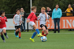 """HBC Voetbal • <a style=""""font-size:0.8em;"""" href=""""http://www.flickr.com/photos/151401055@N04/48705827802/"""" target=""""_blank"""">View on Flickr</a>"""