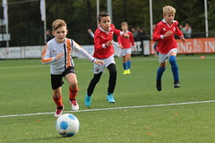 """HBC Voetbal • <a style=""""font-size:0.8em;"""" href=""""http://www.flickr.com/photos/151401055@N04/48705835672/"""" target=""""_blank"""">View on Flickr</a>"""