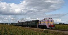 VSM 2530 mit Personenzug (Stefan Markus) Tags: beekbergen niederlande netherlands vsm veluwschestoomtreinmaatschappij ns2530 diesellok diesellokomotive nikon nikond7500 nikondxafsnikkor35mmf18g terugnaartoen terugnaartoen2019