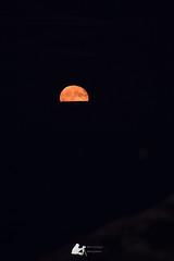 Moonrise (Ben Mouleyre Photographie) Tags: paca provencealpescôtedazur var saintemaxime mer lune leverdelune moon moonrise see nuit canon canonfrance sainttropez golfedesainttropez pleinelune minimaliste