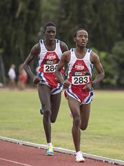 Mamadou Barkinden Diallo e Ndiaga Dieng