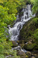 Serenity (andrewfokwm) Tags: ireland waterfall forest water river stone rock trees wet