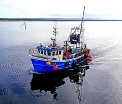 Emulous (calzer) Tags: emulous burghead fishing boat calm squid moray firth scotland