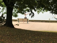 Sit -  rest - breathe - refuel -  pay attention. (Trinimusic2008 -blessings) Tags: trinimusic2008 judymeikle nature bench hbm today september 2019 summer walk gratitude toronto to ontario canada waterfrontrecreationaltrail trees water lake lakeontario