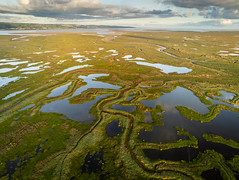 River Dee Salt Marsh & Tidal Inlets (Rob Pitt) Tags: river dee salt marsh tidal inlets wirral parrot anafi drone photography