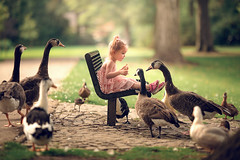 Sharing a Snack ({jessica drossin}) Tags: jessicadrossin naturallight wwwjessicadrossincom geese goose duck ducks feeding park childhood child girl pink green summer connection friendship animals