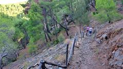 Wanderweg zum Wasserfall (Sanseira) Tags: griechenland greece lesbos lesvos disa travel jeep tour wasserfall wanderweg