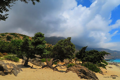 Kedrodasos Beach, on a summer day... (Κώστας Καϊσίδης) Tags: kedrodasos kedrodasosbeach cedar cedarforest chania crete greece hellas greeksummer summer july visitgreece travelgreece sky skyscape clouds cloudy cloudography forest sunny trees sunlight summerday sandy sanddune sand kostaskaisidis canon ngc nature landscape outdoor outside rocks