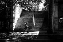 Between the two trees (pascalcolin1) Tags: paris12 homme man arbre trees lumière light photoderue streetview urbanarte noiretblanc blackandwhite photopascalcolin 50mm canon50mm canon marches steps escalier stairs
