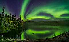 Aurora over Cameron River with Autumn Colours (Amazing Sky Photography) Tags: ingrahamtrail river northernlights auroraborealis yellowknife nwt northwestterritories nightscape stars ramparts cameronriver autumn trees colours mist panorama bigdipper reflection water