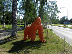 just an ordinary orange monkey (helena.e) Tags: helenae semester vacation holiday älsa husbil rv motorhome apa monkey gorilla orange jokkmokk djur animal norrland
