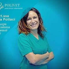 Pronto soccorso veterinario | Polivet.it (polivetroma) Tags: pronto soccorso animali