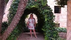 20190908_132811 (uweschami) Tags: spanien espania mallorca palma altstadt arabischesbad palmen hamam mauren banysarabs garten gewölbe