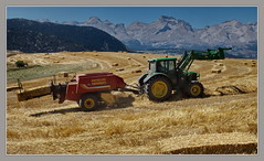 one at the time (julien.bach) Tags: harvest alpes devoluy straw haystack