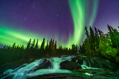 Aurora over Cameron River Ramparts (Amazing Sky Photography) Tags: ingrahamtrail waterfalls river northernlights auroraborealis yellowknife nwt northwestterritories nightscape stars ramparts cameronriver autumn trees colours lightpainting led