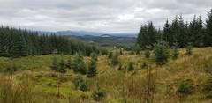 Day 251 (Iain Purdie) Tags: 2019 happy stirlingshire countryside scenery aberfoyle scotland