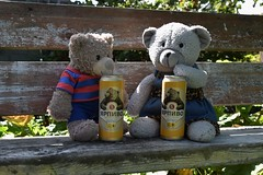 Happy Teddy Bear Day! (veebruar) Tags: teddybearday international celebrating beer bears 9september