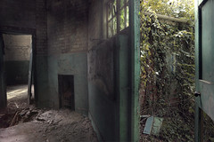 The Beast Outside (andre govia.) Tags: andregovia abandoned school woods decayed decay down decaying decayedbuildings fireplace haunted urbanexploration planet