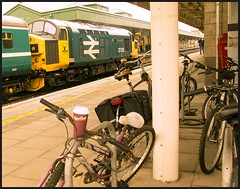 'On yer Bike!' (peterdouglas1) Tags: class37 37025 cardiffcentral transportforwales englishelectric largelogo