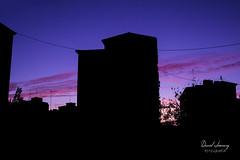 (Daniel Jiménez Fotógrafo) Tags: landscape paisaje atardecer getdark sun sunset lateafternoon building edificio cloud nube sky cielo colors purple yellow red pink dark darkness madrid spain españa danifotografia danieljimenezfotowixcomportfolio danieljg